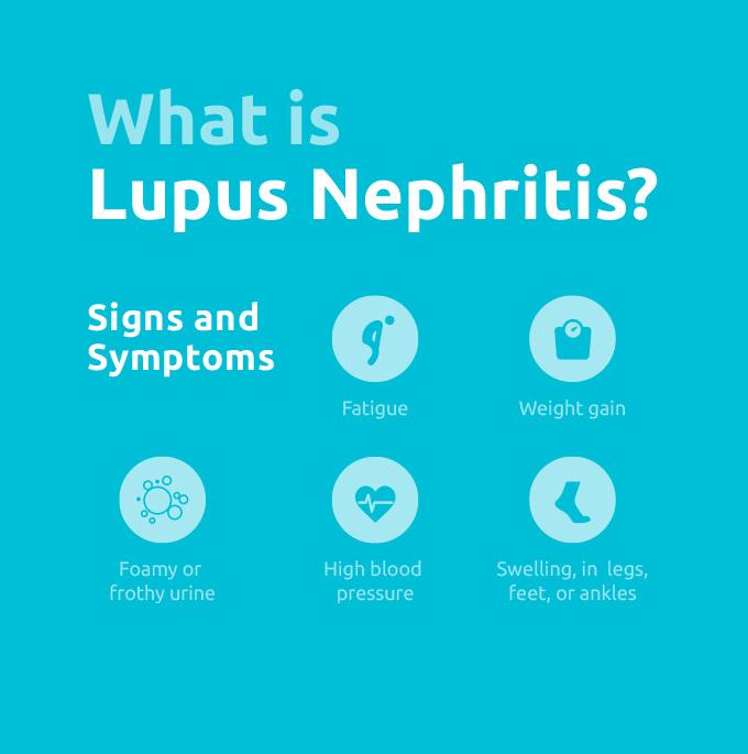lupus nephritis infographic